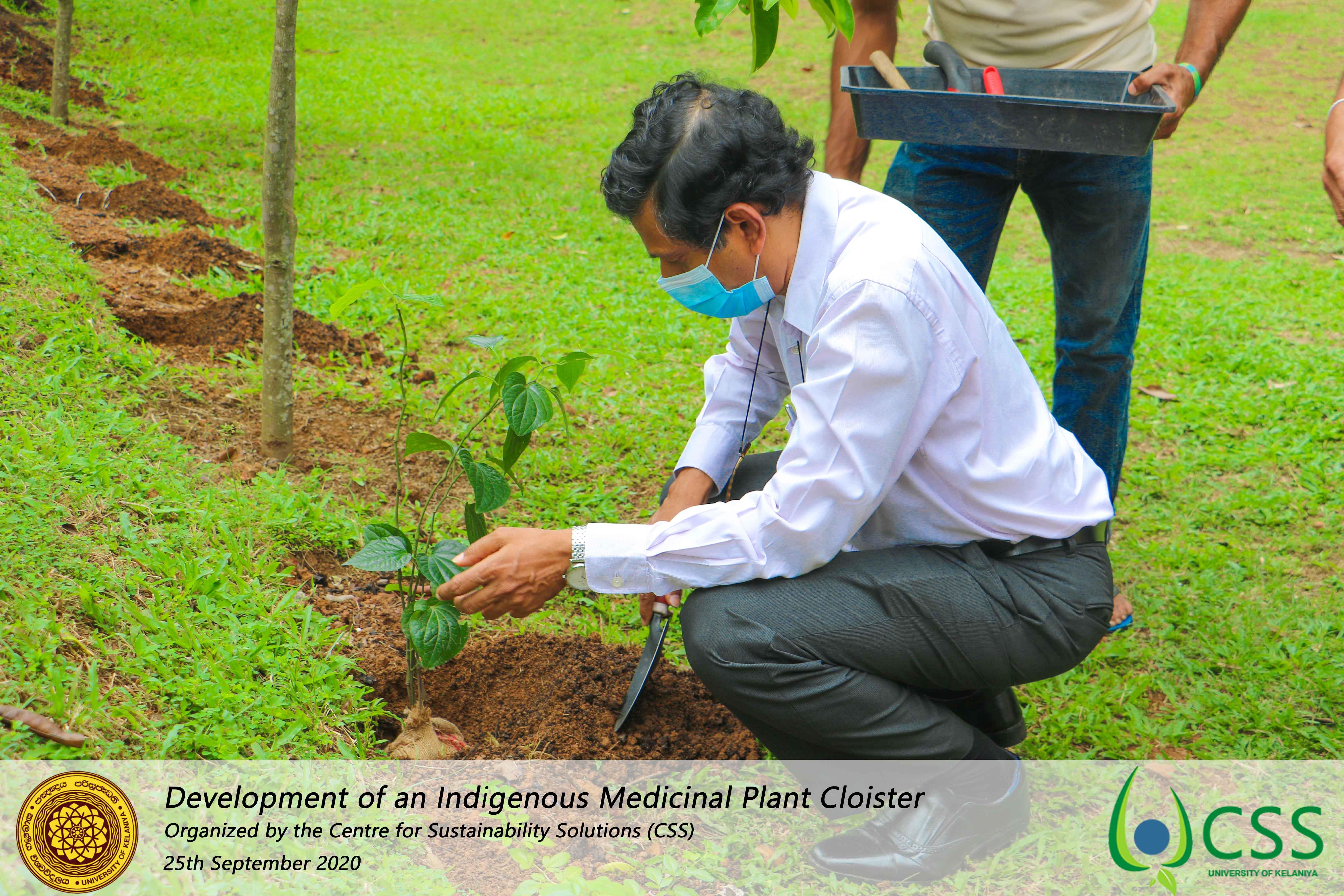 Development of A Medicinal Plant Cloister in University of Kelaniya